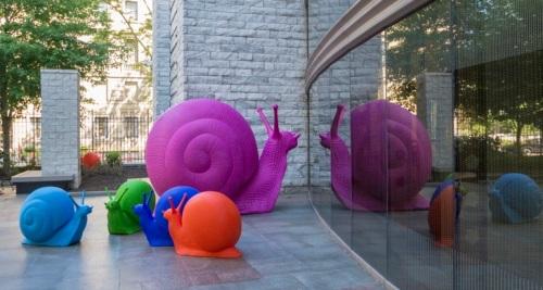 Snail Photo © Bob Perkosk